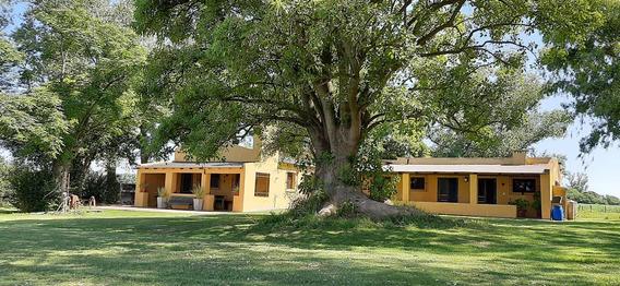 Puesto El Pato Casa De Campo - San Antonio De Areco