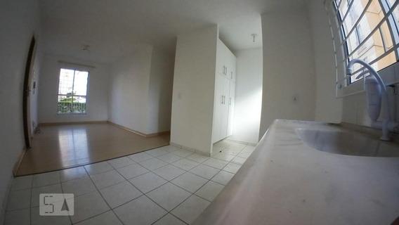 Apartamento Para Aluguel - Parque Da Fonte, 3 Quartos, 55 - 893050040