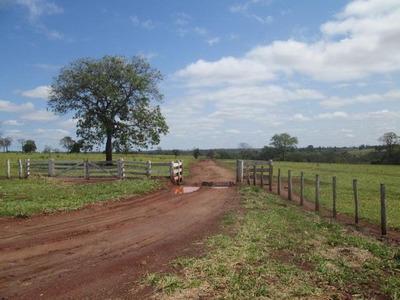 Fazenda Rural À Venda, Em Jaraguari-ms - Codigo: Fa0208 - Fa0208