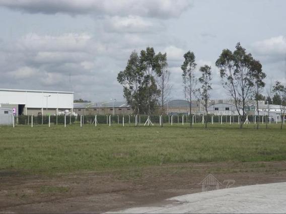 Lotes En Venta 800 M2 Zona Industrial A 200 Mts. Acceso Oeste - La Reja, Moreno