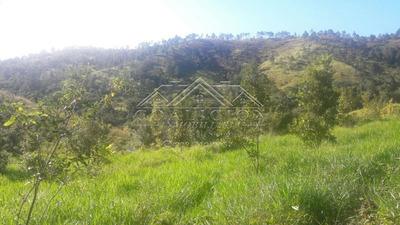 Coalición Vende Finca 704 Tareas En San Jose De Las Matas-