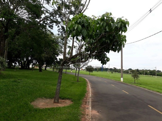 Jaguariúna Condomínio Fechado 966 Metros Ótima Topografia - Te00033 - 33799808