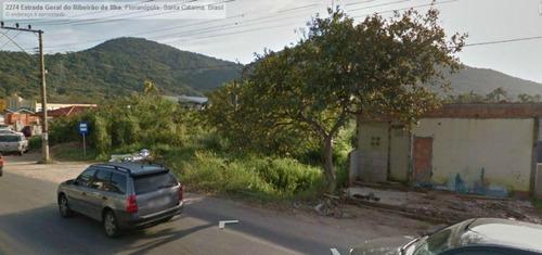 Imagem 1 de 10 de Excelente Terreno Comercial No Bairro Rio Tavares - Te0107