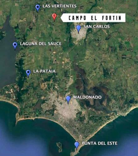 Oportunidad! Campo 7,93 Hectáreas En Camino De Los Ceibos