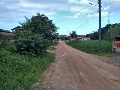 Terreno Para Venda Em Barra Velha, Pedras Brancas - 4008 / Rd