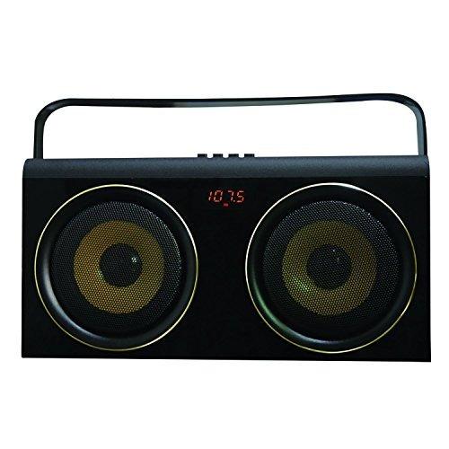 Sistema De Altavoces Portátiles Con Karaoke