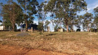 Chácara Em Luziânia Go-010 Fazenda Econature Com Barraco
