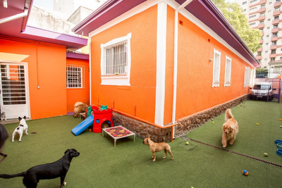 Venda - Hotel E Creche Para Cachorro - Pet Shop