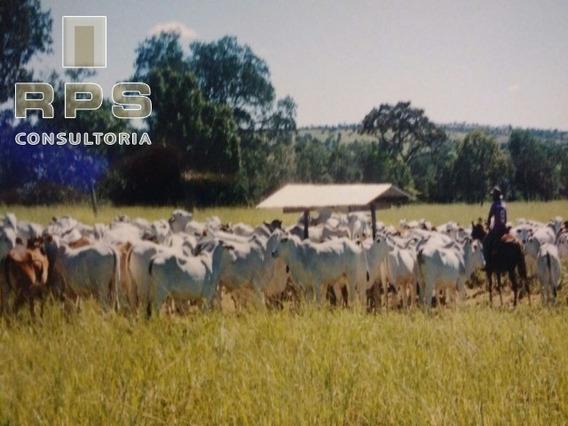 Fazenda Para Venda Em Pirapora De Minas Gerais-fazenda Para Criação De Gado. - Fa00009 - 33888668