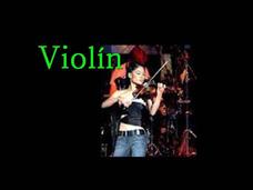 Clases De Violín En 1 Nivel De Aprendizaje.