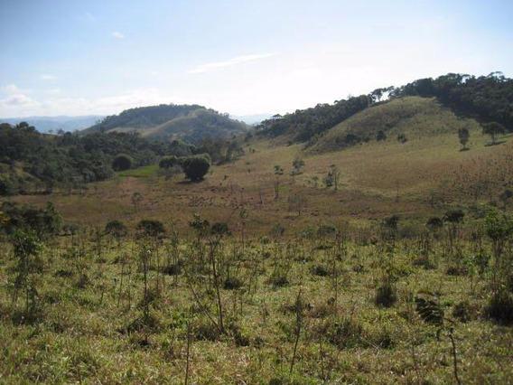 Fazenda 38 Alqueires - Cambuí-mg - Fa0016
