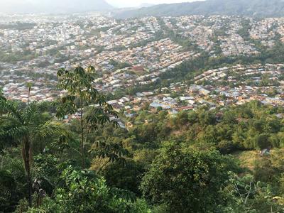 Venta Finca 100 Hectareas Caquetá, Colombia