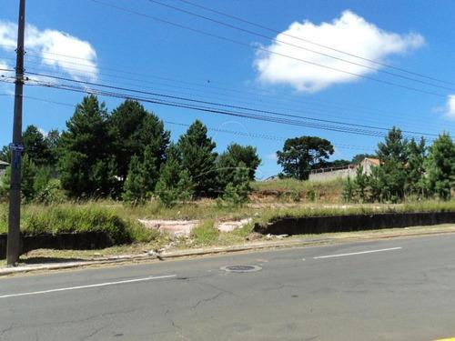 Imagem 1 de 1 de Terrenos - Ref: L708
