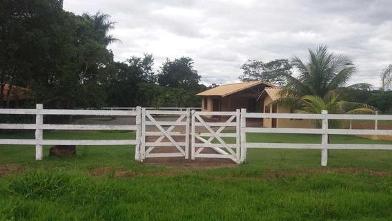 Fazenda À Venda - 21,97 Hectares - Felixlândia (mg) - 2412