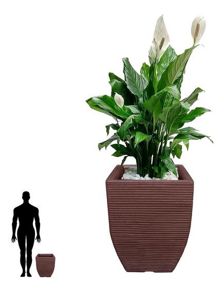 1 Vaso De Planta Em Polietileno Plastico Decorativo T 45x35