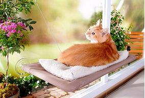 Cama Rede De Janela Para Gatos Suspensa! Super Confortável!