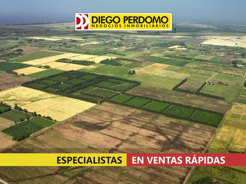 Campo De 150 Has En Venta, San José
