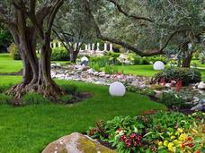 Poda Tala De Arboles Jardineria Limpieza De Terrenos Parques
