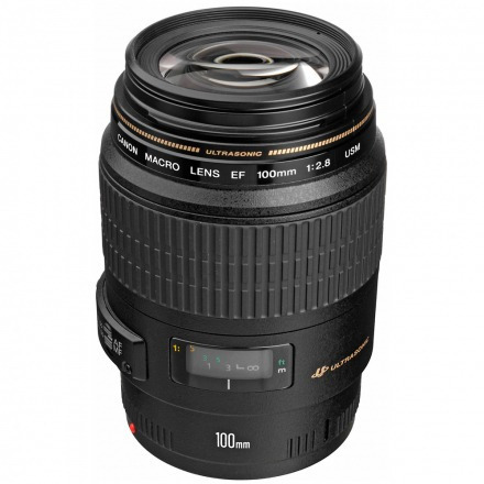 Lente Canon Ef 100mm F/2.8 Macro Usm 100% Original + Brinde