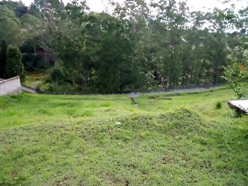Imagem 1 de 15 de Terreno Em Parque Delfim Verde  -  Itapecerica Da Serra - 500