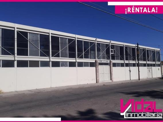 Edificio En Renta En Fracc Villa Alegre