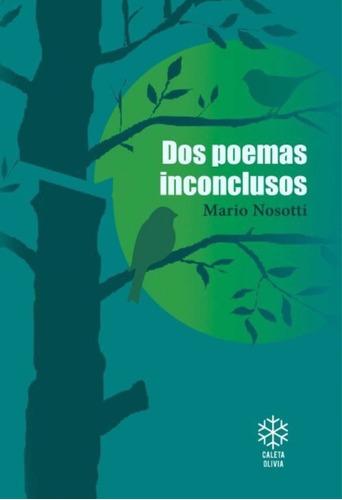 Imagen 1 de 1 de Dos Poemas Inconclusos - Mario Nosotti