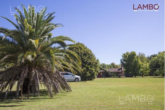 Espectacular Casa Y Jardin De 4500mts En Chacras Del Ocho