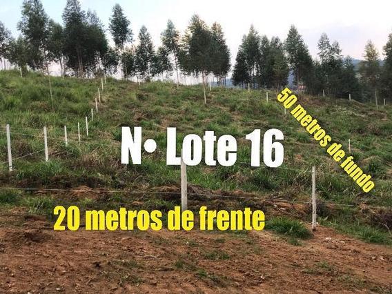 09c- Terreno Cercado!
