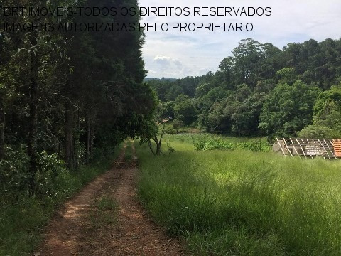 Imagem 1 de 19 de Chacara - Ch00276 - 33515589