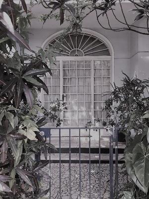 Casa Em Jardim Europa, São Paulo/sp De 0m² 4 Quartos À Venda Por R$ 4.150.000,00 - Ca239376