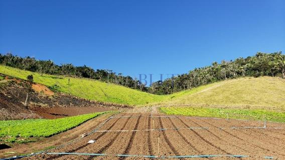 Fazenda Com 131 Ha, Sendo 83,82 Ha Últeis/culti... - 170