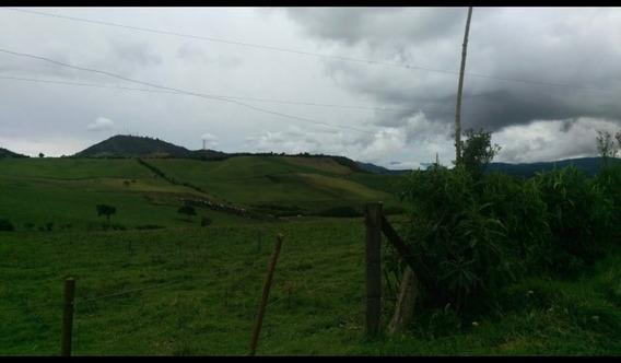 Venta De Hacienda 27 Hct, Tulcan