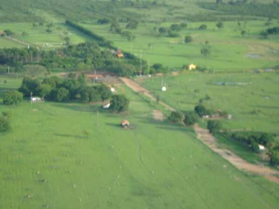 Excelente Fazenda 103 Mil Hectares