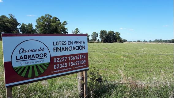 Chacras Del Labrador 75% Vendido Lotes En Un Campo Cercano