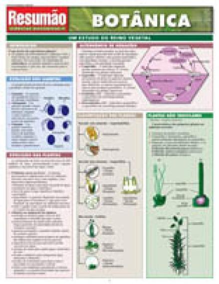 Resumao Botanica - Bafisa