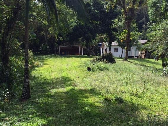 Chácara - Residencial - 41160