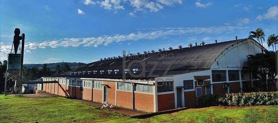 Terreno À Venda, 21100 M² Por R$ 31.650.000 - Sousas - Campinas/sp - Te0729