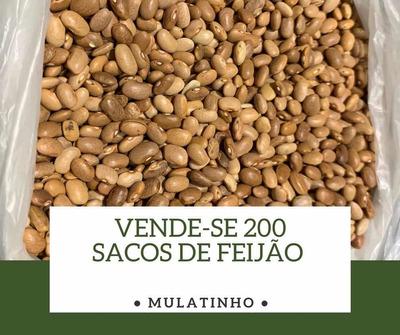 200 Sacos De Feijão Mulatinho