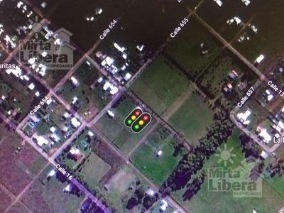 Terreno Venta - Calle 14 Bis Entre 655 Y 656 - Villa Parque Sicardi