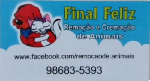Remoção E Cremação De Animais R J