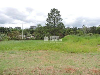 Terreno À Venda No Condomínio Villas Do Golfe Em Itu. - Te3350