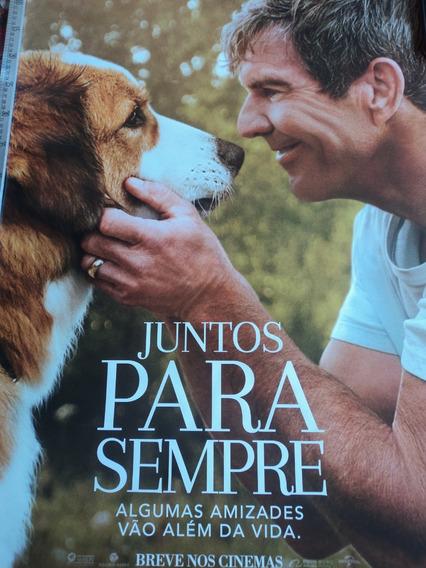 Poster:cartaz:juntos Para Sempre:dennis Quaid:94cm X 64cm