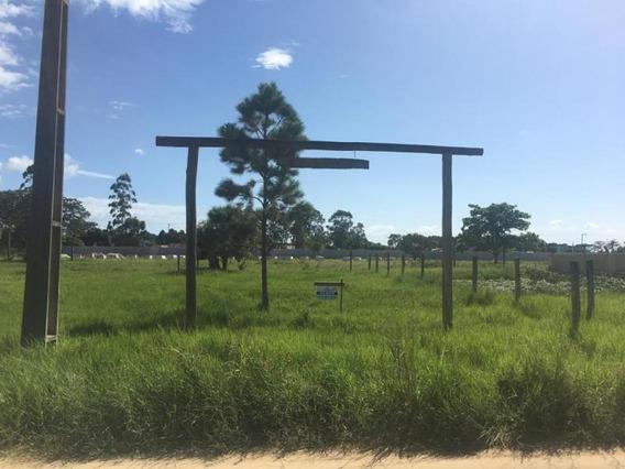 Terreno Para Venda Em Imbituba, Araçatuba - 681_2-858746