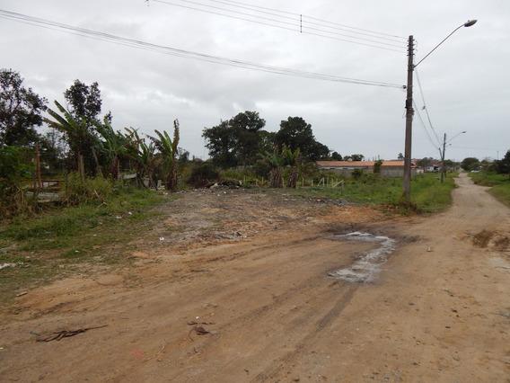 Terreno No Bairro Nova Peruíbe Para Venda