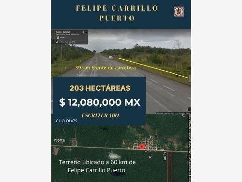 Terreno En Venta En Rancho Limones - Felipe Carrillo Puerto