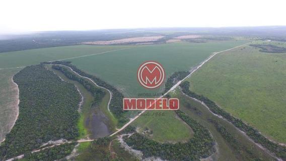 Fazenda Com 2 Dormitórios À Venda, 1460 M² Por R$ 14.000.000 - Parque Izabel - Abadia De Goiás/go - Fa0006