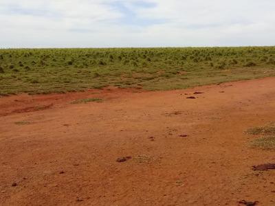 Fazenda A Venda No Vale Do Araguaia.500 Alqueires ( 2.420há