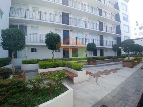 Exterior, Balcon, Roof Garden Privado, Mascotas, La Raza