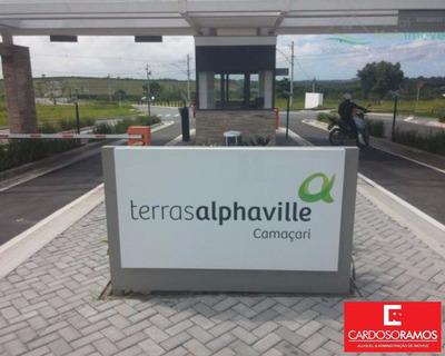 Terreno - Te00019 - 3229016