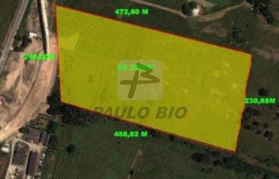 Terreno Industrial - Santa Luzia - Ref: 670 - V-670